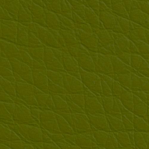 GRASS_6722